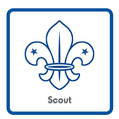 Acceso a la página de Scout